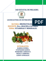 Vitaminas y Minerales Bromatologia