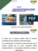 Ponencia Taller Conserva Caracoles.1