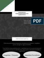 Expo Inmunodeficiencia Linfocitos b Meknismos 3353 (1)
