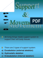 Chp. 8 Support and Movement (1)