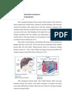 Teori Dasar Praktikum Bioklin