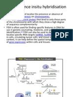 Fluorescence Insitu Hybridisation