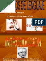 Aspectos Del Lenguaje Expo...