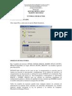 TUTORIAL_DE_REACTOR.pdf