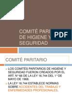 comitè paritario, resumen