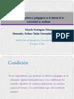 Universidad y Modelos Cognitivos Dominguez