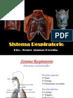 Sistema Respiratorio.pps