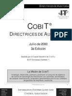Directrices de Auditoria-Audit Guidelines