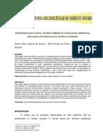 REPRESENTAÇÃO SOCIAL DE MEIO AMBIENTE E EDUCAÇÃO AMBIENTAL NAS ESCOLAS PÚBLICAS DE TEÓFILO OTONI  MG