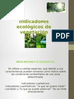 Indicadores Ecologicos de Vegetacion