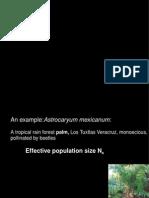 Deriva_2.pdf
