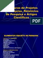 Roteiro de Pesquisa.pdf