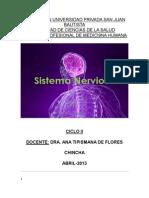 Sistema Nervioso Apsjb-ch-II Ciclo