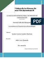La Educacion Intercultural_ Un Porceso de Sonsolidacion