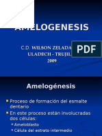 Decima clase. 2007 - I