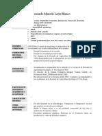 Curriculum Marcelo
