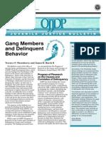 Conducta Delincuencial y Pandillas, OJJDP