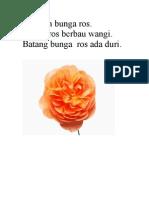 Ini Ialah Bunga Ros