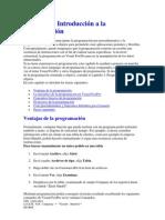 Manual de programador visual focpro.docx