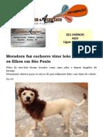 Moradora faz cachorro virar leão para agradar os filhos em São Paulo