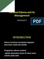 Edema Serebral