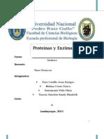 Monografia de proteinas y enzimas