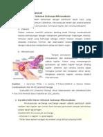 Kesimpulan Exchange Mikrovaskular