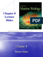 Chapt08 Lecture