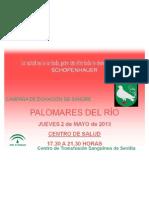 CARTEL DÍA MUNDIAL DONANTE DE SANGRE 2013