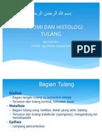 Anatomi Dan Histologi Tulang