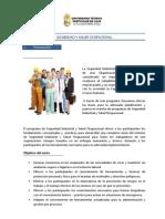 Seguridad y Salud Ocupacional3