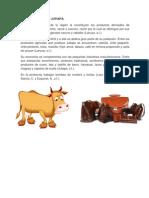 ECONOMIA DE JUTIAPA.docx