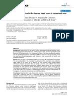 CI4.PDF