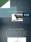 Leche de Bufala[1]Completa