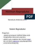 Hormon Reproduksi