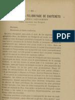 Reclams de Biarn e Gascounhe. - Noubembre 1907 - N°11 (11e Anade)