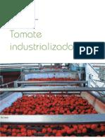 r47_06_TomateIndustrializado