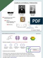 TEMA 6. Hidrocarburos Aromaticos y Heterociclos (G. Silbestri)