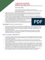 Saracini Fact Sheet