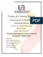 Seminario Embriogenesis del Aparato Cardiovascular FINAL.docx