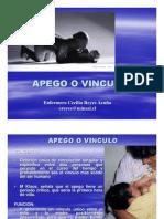 APEGO 20071