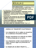 CLASE 2 Fosforilacion Oxidativa 2012-BOL 2