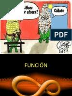 FUNCIÓN.pptx