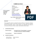 CURRICULUM ING. ANDERSON NUÑEZ FERNANDEZ.doc1