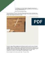 TandemFlightwPics.pdf