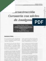 reconstruccion_coronaria