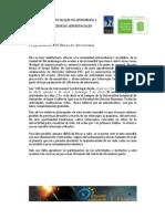 100 Horas Programacion Bucaramanga