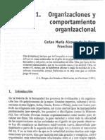 Organizaciones y Comportamiento Organizacional