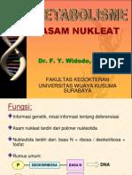 Asam Nukleat
