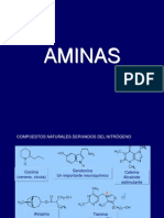 AMINAS (1)